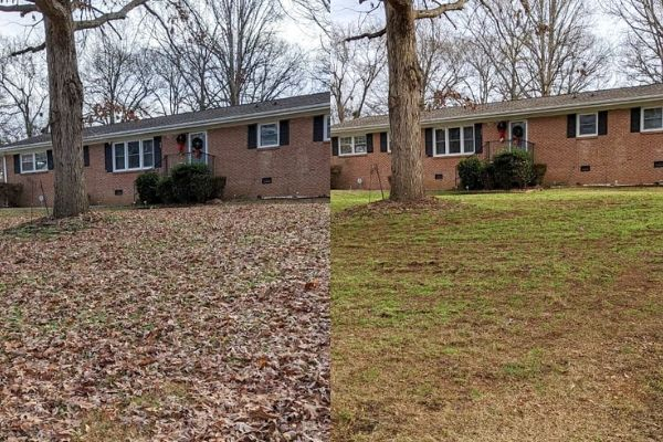 A before and after image showing the lawn with leaves covering the grass and a after image when the leaves have been fully removed.