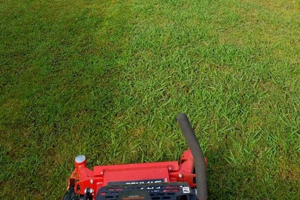 A commercial lawn mower on lush green turf.