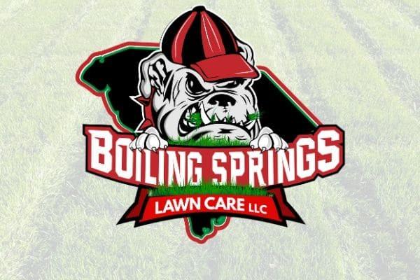 Boiling Springs Bulldog Logo